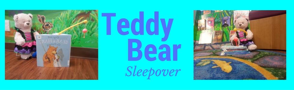 Teddy Bear Sleepover