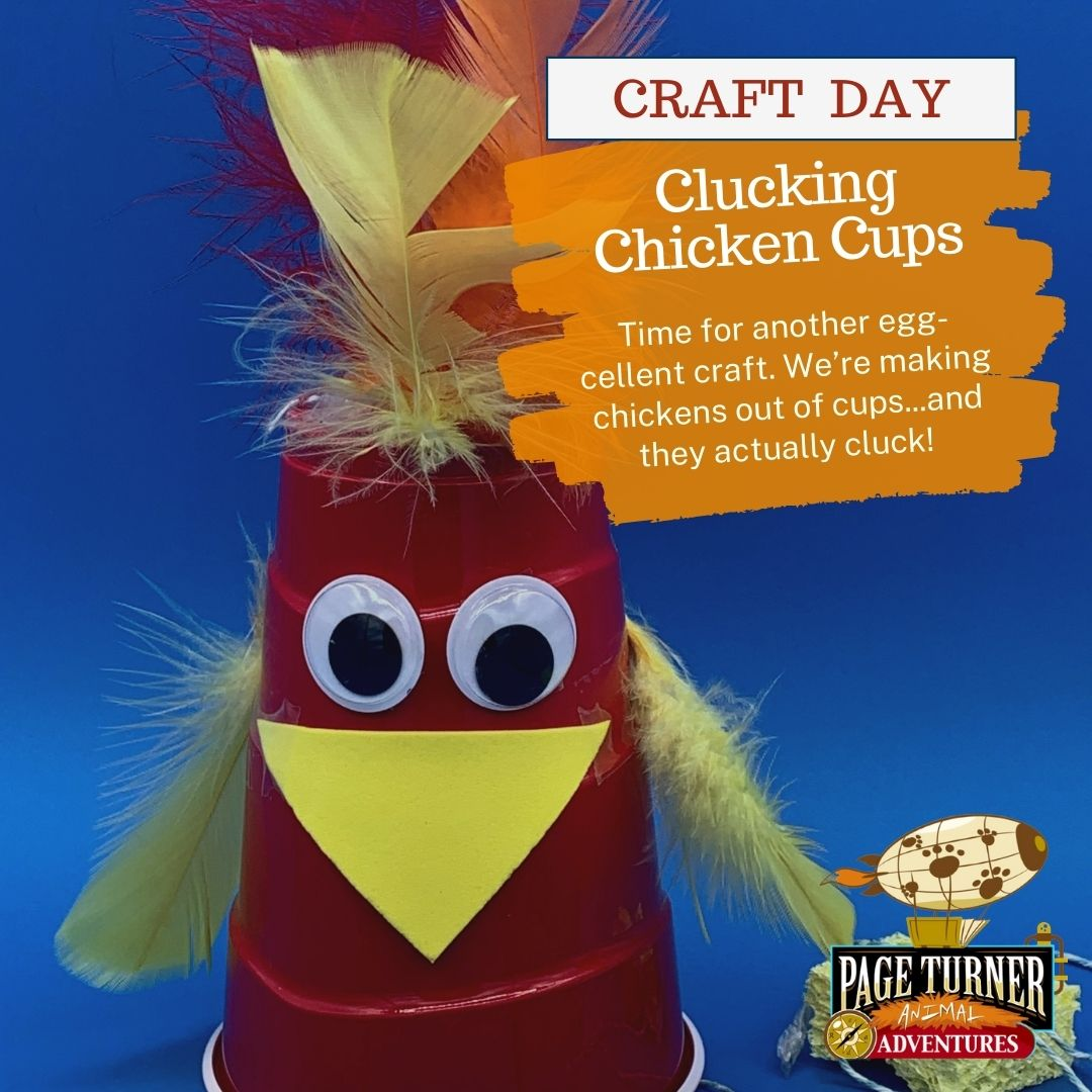 Page Turner Adventures Mashup day chicken cups