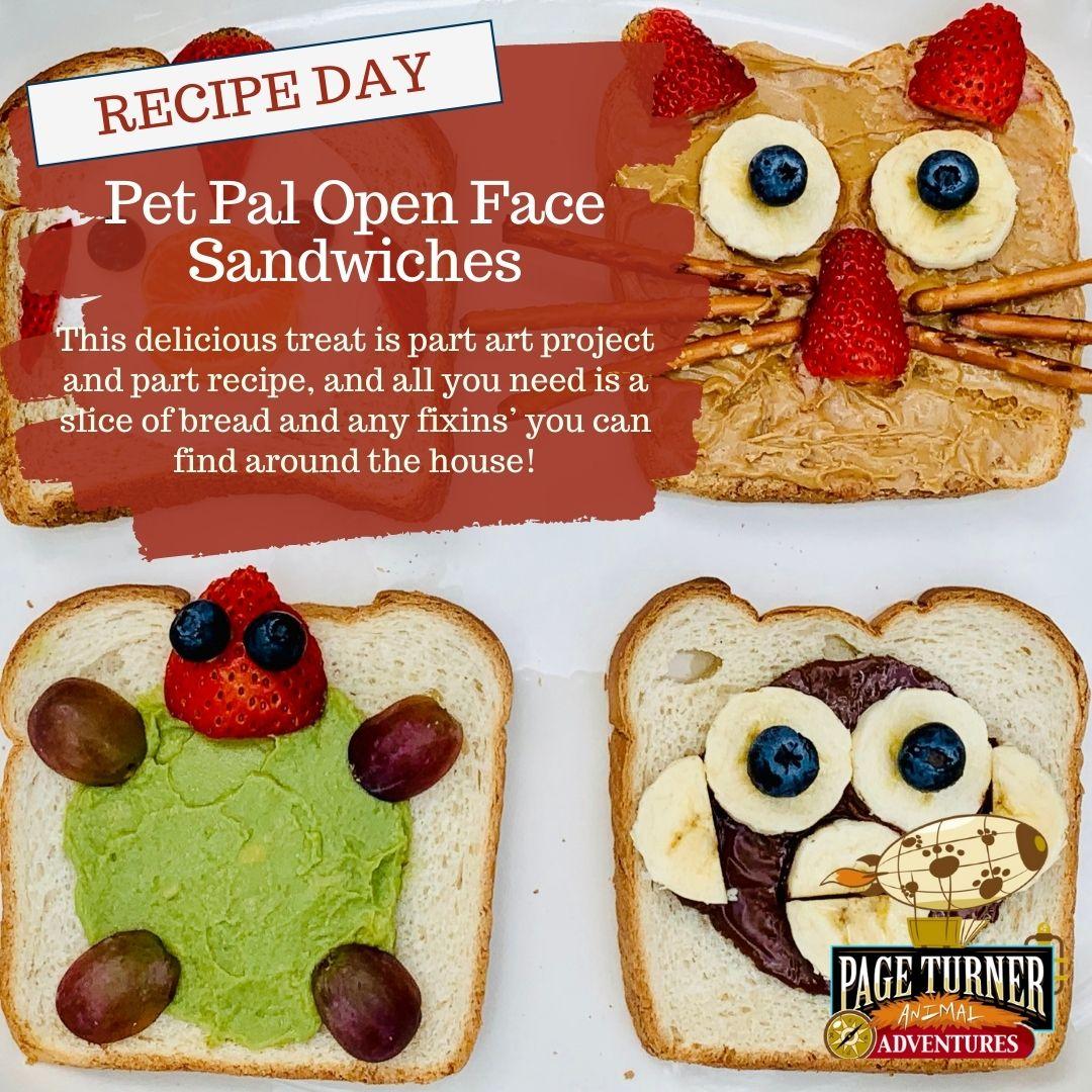 Pet pal mash-up pet sandwiches