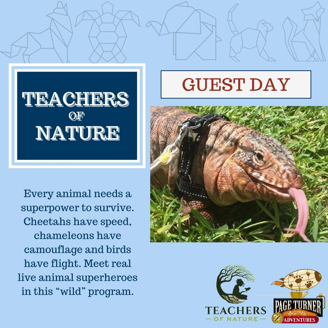 GUEST DAY: Teachers of Nature