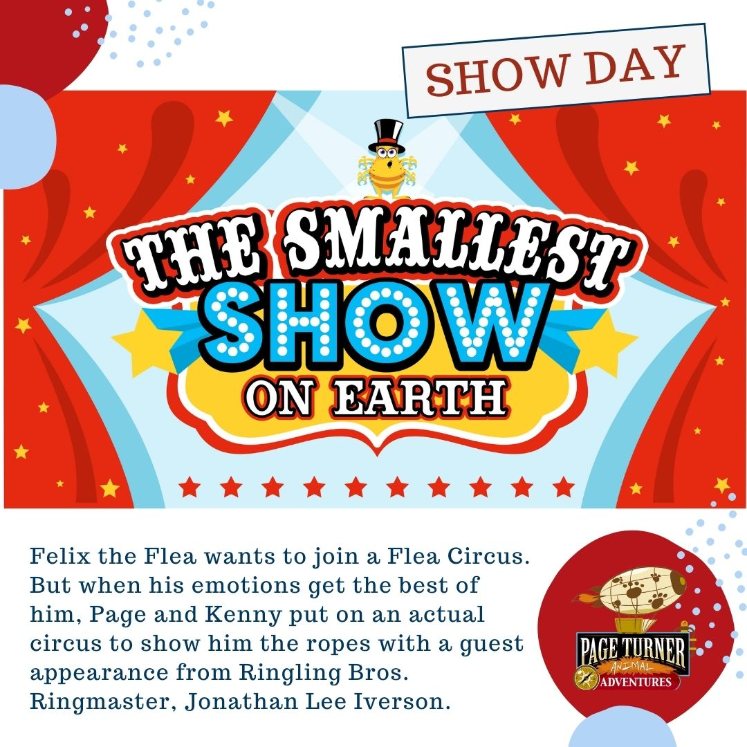 SHOW: The Smallest Show on Earth